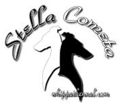 Stella-Cometa-kennel