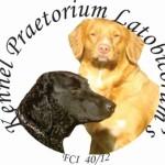 Profile picture of Praetorium Latobicorum's