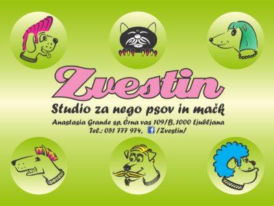 Studio za nego psov in mačk ZVESTIN