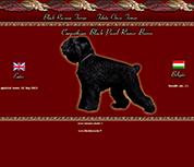 Black Terier