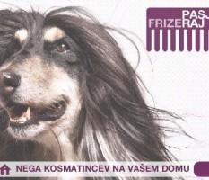 Pasji Frizeraj, Tija Pivk s.p.