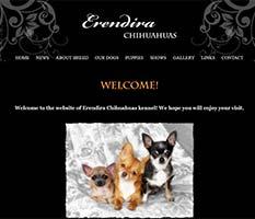 Erendira Chihuahuas