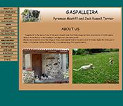 Gaspalleria