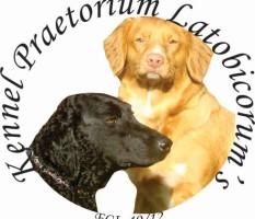 Praetorium Latobicorum's