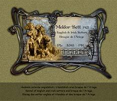 Meldor-Sett kennel