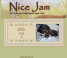 Nice Jam