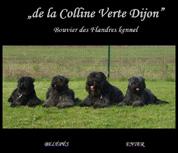 de la Colline Verte Dijon