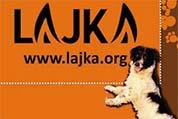 Društvo za zaščito in pomoč živalim v stiski Lajka