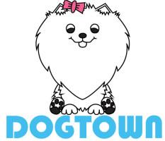 dogtown.si