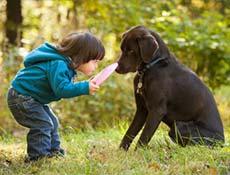 Kako se mora otrok obnašati v družbi psa