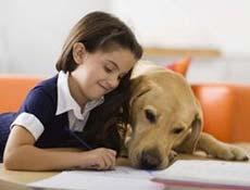 Kako se mora pes obnašati v družbi otroka