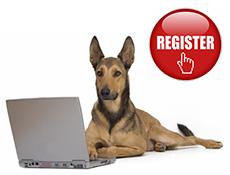 Registracija ter prijava na spletni portal Smrček.si