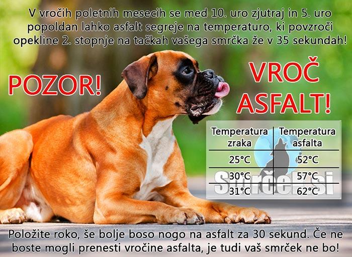 vročinski udar pri psu